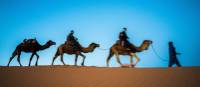 Camel riding in the Sahara | James Griesedieck