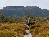 Walking on the Overland Track |  <i>Linda Murden</i>