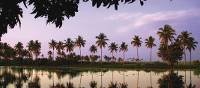 The Keralan backwaters of Southern India | David Lazar