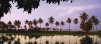 The Keralan backwaters of Southern India | David Lazar